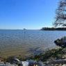 Cox Neck - Bay Views