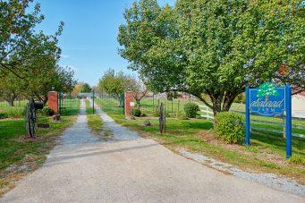 Aliabaad Farm Welcome gate