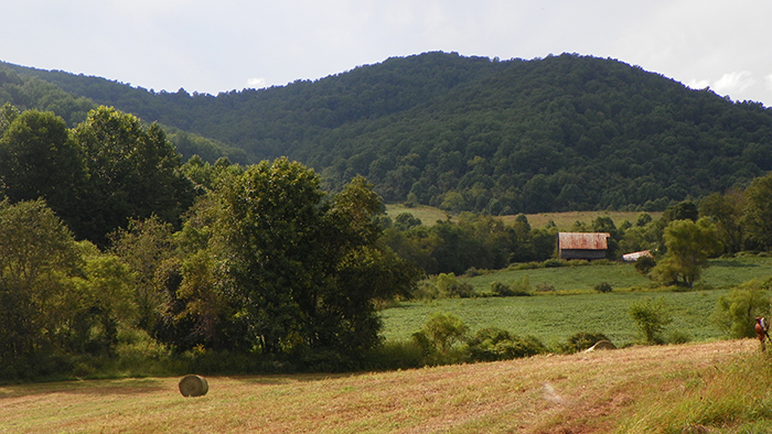 Located 90 miles from Washington, D.C., in a peaceful and private location in beautiful Rappahannock County, Virginia, this property's sale included two homes and four parcels of land, totaling 612 acres.