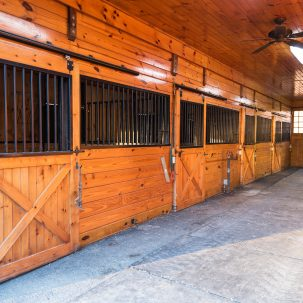 Fawn Hill Stables