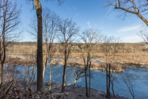 Views of the Potomac River from the property